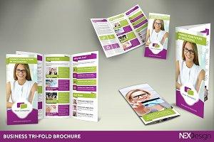 Business Tri-Fold Brochure -SB #012