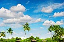 Island. Sand beach. Blue sky