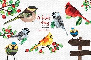 A Bird's Story