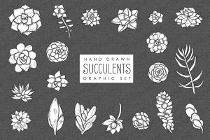 Succulents Graphic Set