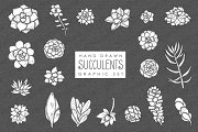 Succulents Graphic Set