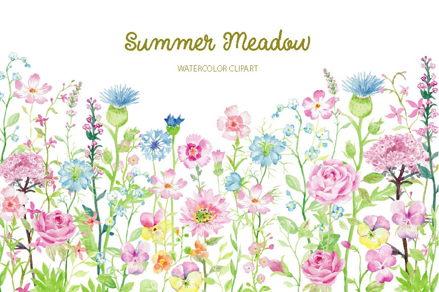 watercolor clipart summer meadow illustrations