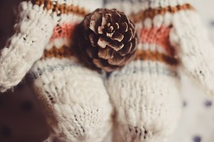 Pine Cone in Wool Gloves