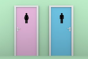 toilet doors color