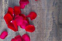 Valentine roses background