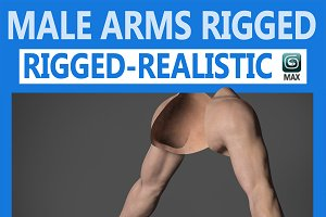 Male Arms Rigged