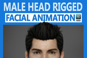 Male Head Rigged