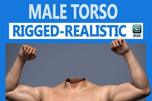 Male Torso rigged