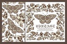 Set. Butterflies. Flowers. Card.