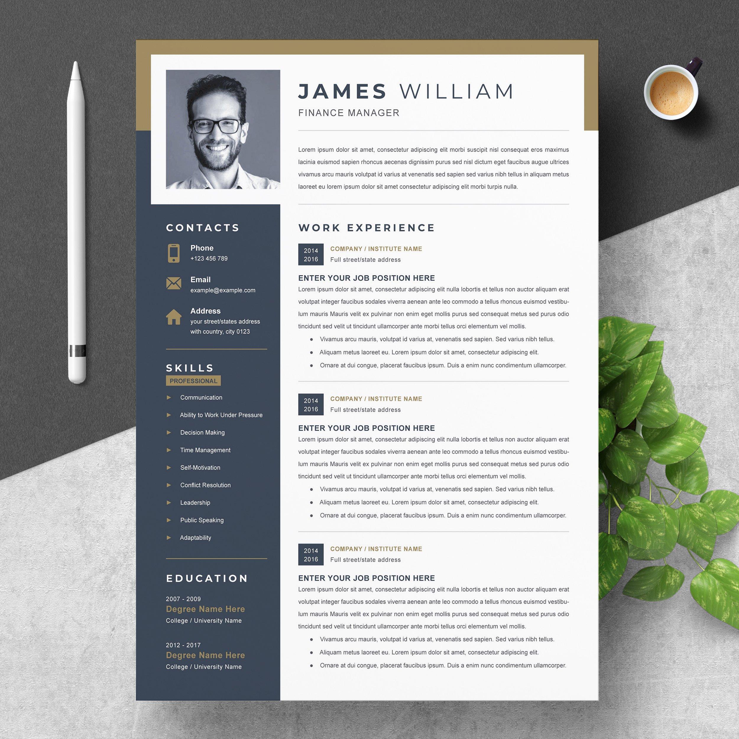 professional word resume template  creative illustrator