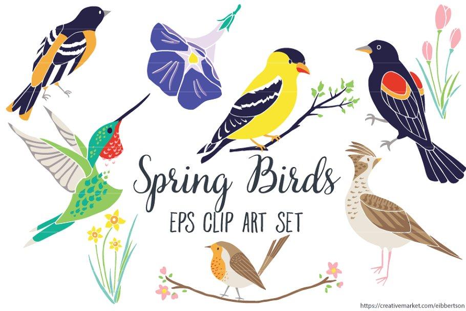 Spring bird. Birds clipart vector eps