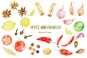 Watercolor Clipart Spice and Garnish