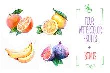 4 Watercolor fruits Vector + Bonus