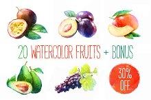 20 watercolor fruits Vector + bonus