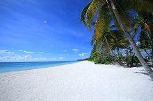 The coast of the Caribbean sea