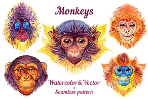 Watercolor monkeys