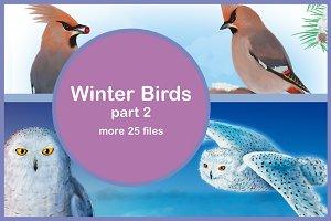 Winter Birds, part 2