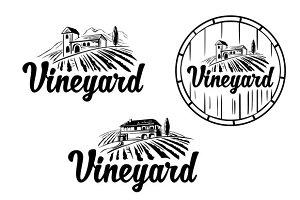 Landscape - villa, vineyard, hills.