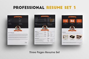 Professional Resume Set 3