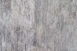 Wood Fiber