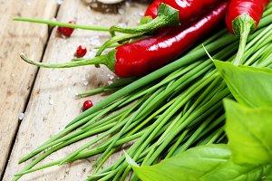 Garlic, basil, chives and chili pepp