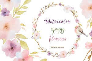 Watercolor spring flowers.