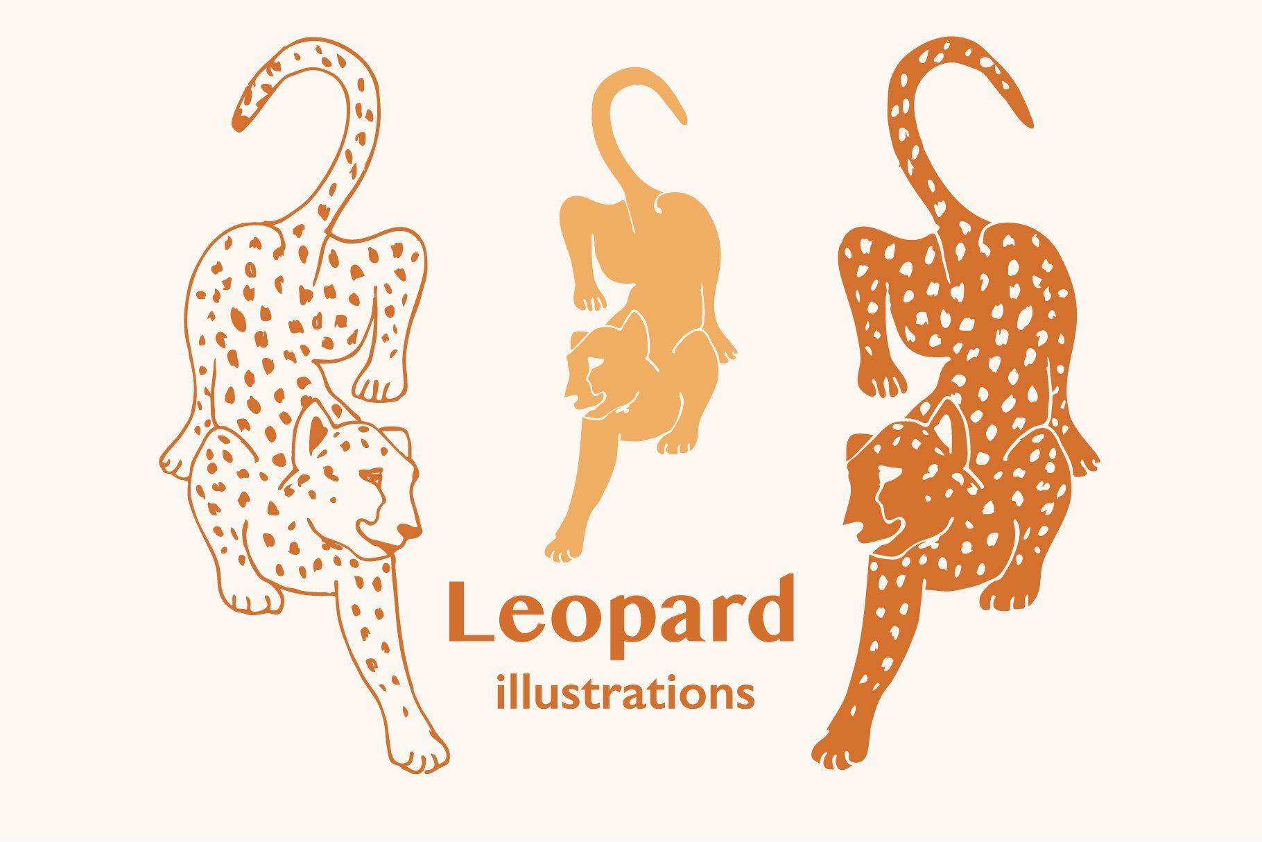 leopardillustration