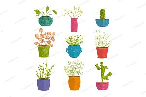 Set of green indoor plants in pots