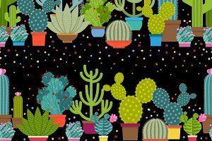 Horizontal patterns of cactus