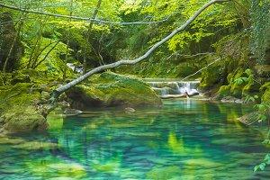 wild river landscape