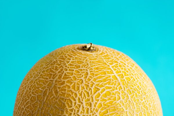 Cantaloupe Yellow Melon Fruit High Quality Food Images Creative Market See more of the cantaloupe kid on facebook. creative market