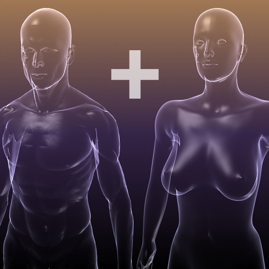 Male And Female Anatomy X Ray Bodies 3d People Models Creative