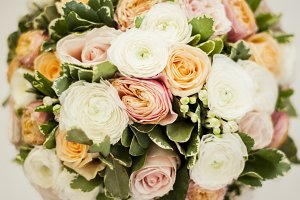 Beautiful pastel colors roses