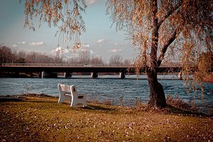 Afternoon Seat Park Bench By River