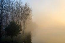 Mysterious fog.jpg