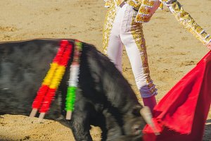 Bullfighter gives a pass copia.jpg