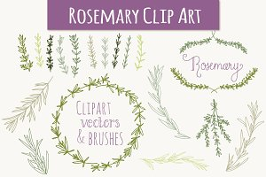 Rosemary Clip Art & Vectors