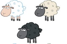 Funny Sheep Collection - 1