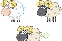 Funny Sheep Collection - 2