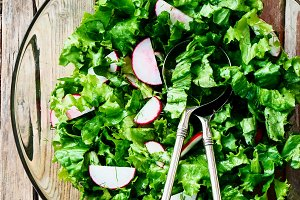 Salad with lettuce and radishes