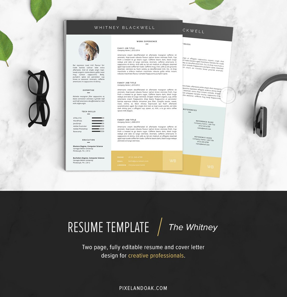 resume template the whitney pk resume templates creative market