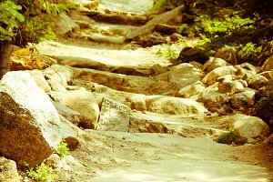 Upward Path