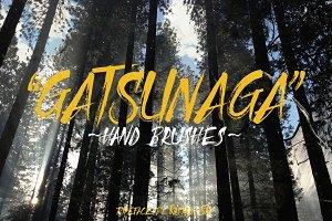 Gatsunaga Hand Brushes