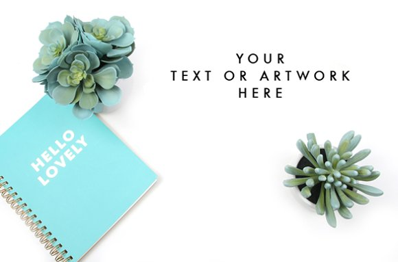 Styled Stock Photography Image in Product Mockups