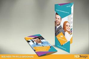 Business Tri-Fold Brochure - SB #013