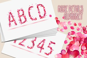 Pink rose petals alphabet. Vector