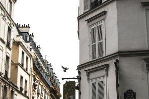 Parisian Street with Bird in Flight