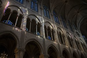 Stained Glass Reflection Notre Dame