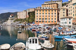 small harbor in Camogli, Italy