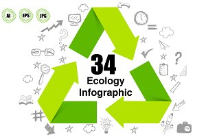 Ecology Infographics Bundle